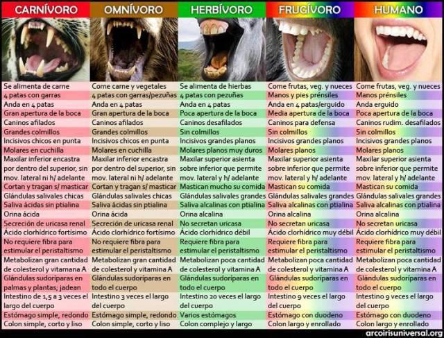 Caracteristicas dentaduras animales